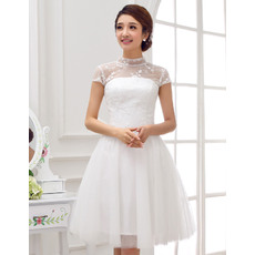 Gorgeous Mandarin Collar A-Line Satin Organza Short Reception Wedding Dresses