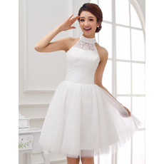 Classy Mandarin Collar Lace A-Line Short Dresses for Wedding Reception