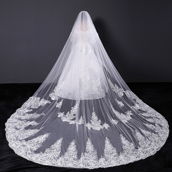 2 Layers Cathedral-Length Tulle with Lace Appliques Wedding Veils