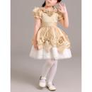 Plus Size Flower Girl Dresses