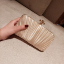 Elegance Satin Pleated Evening Party Handbags/ Purses/ Clutches